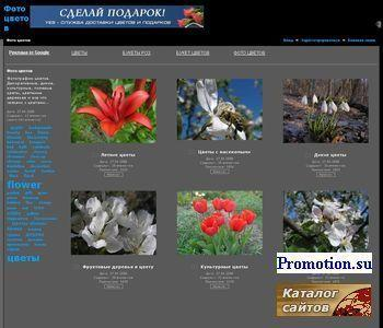 Фото цветов - http://fotocvetov.com/