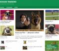 Doggie-training все о собаках - http://doggie-training.ru