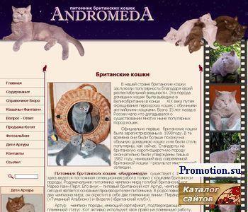 Британские котята - питомник Андромеда - http://andromeda.msk.su/