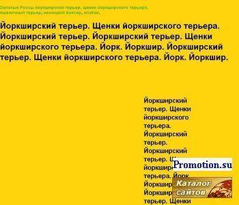 "Йоркширский терьер.Питомник ""Золотые Россы"" - http://iork.zrossy.ru/"