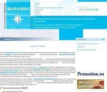 """Агентство консалтинга """"Бинави"""" - http://www.binavi.ru/"""